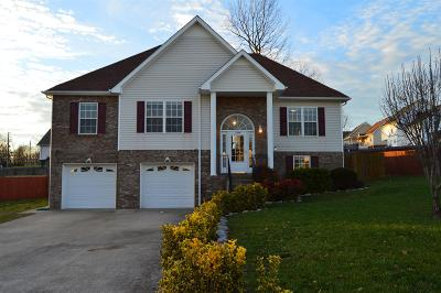 Clarksville Single Family Home For Sale: 1704 Flagstone Dr