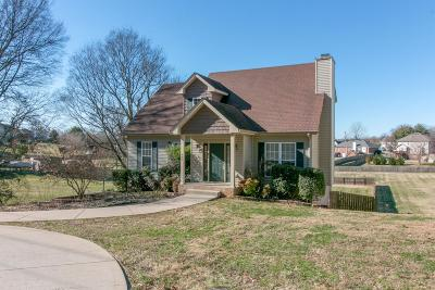 Clarksville Single Family Home For Sale: 2041 Old Russellville Pike