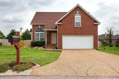 Spring Hill  Single Family Home For Sale: 2005 Patrick Way