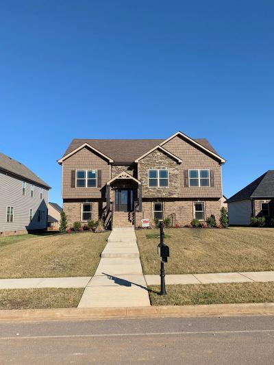 Clarksville Single Family Home For Sale: 237 John Duke Taylor Blvd