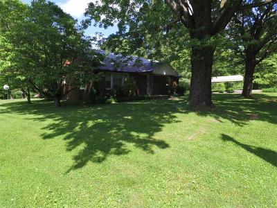 Van Buren County Single Family Home For Sale: 225 E Cook