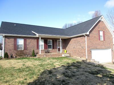 Clarksville Single Family Home For Sale: 244 Shadyside Ln