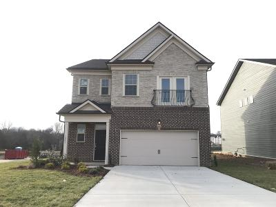 Spring Hill Single Family Home For Sale: 1001 Lonergan Circle #67