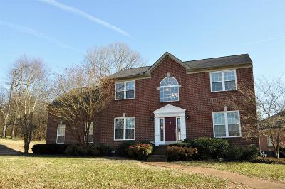 Hendersonville Single Family Home For Sale: 242 Spy Glass Way
