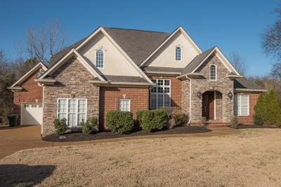 Mount Juliet Single Family Home For Sale: 2082 Brookstone Dr