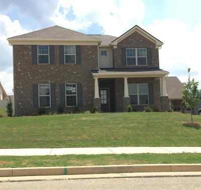 Spring Hill Rental For Rent: 7005 San Gilberto Ct