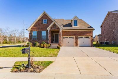 Nolensville Single Family Home For Sale: 4617 Robin Ln
