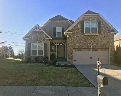 Spring Hill Single Family Home For Sale: 2005 Katach Ct