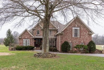 Hendersonville Single Family Home For Sale: 1405 Drakes Creek Rd