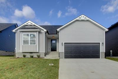 Clarksville Single Family Home For Sale: 1341 Abby Lou Drive