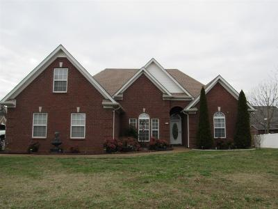 Smyrna Single Family Home Under Contract - Not Showing: 813 Chaqueta Ct