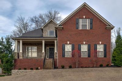 Hendersonville Single Family Home For Sale: 1073 Mansker Farms Blvd