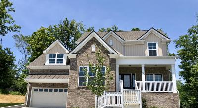 Hendersonville Single Family Home For Sale: 129 Villa Way