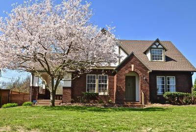 Nashville Single Family Home For Sale: 205 Cherokee Rd