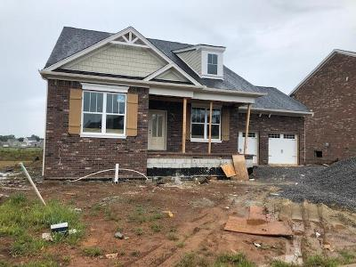 Nolensville Single Family Home For Sale: 1893 Abbywood Drive