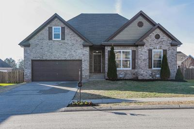 Williamson County Single Family Home For Sale: 3024 Sommette Dr