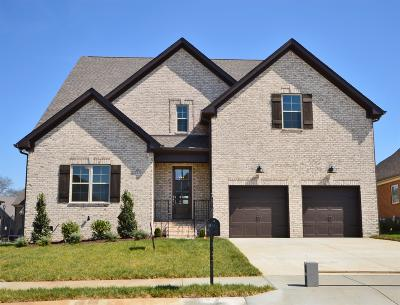 Williamson County Single Family Home For Sale: 4102 Miles Johnson Pkwy (334)