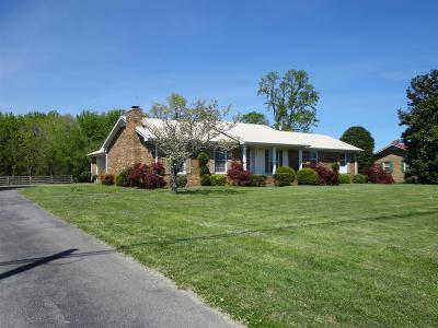Smithville Single Family Home For Sale: 624 E Broad St