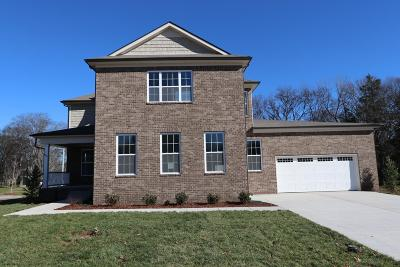 Smyrna Single Family Home Under Contract - Not Showing: 1006 Green Meadow Lane Lot 1