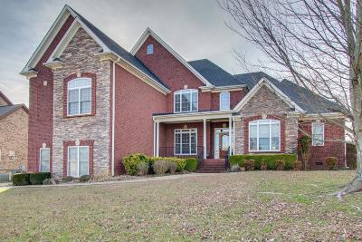 Hendersonville Single Family Home For Sale: 1041 Somerset Downs Blvd