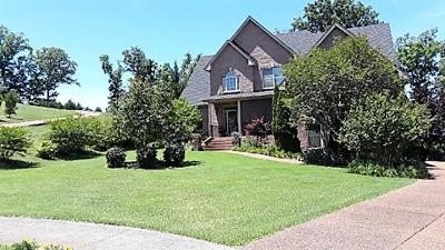 Hendersonville Single Family Home For Sale: 130 Pilot Knob Ln