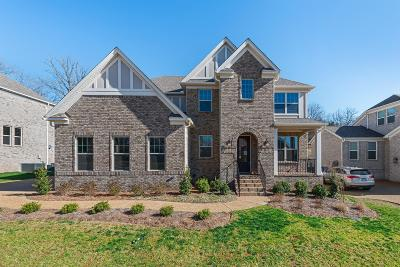 Sumner County Single Family Home For Sale: 106 North Malayna Dr Lot 88