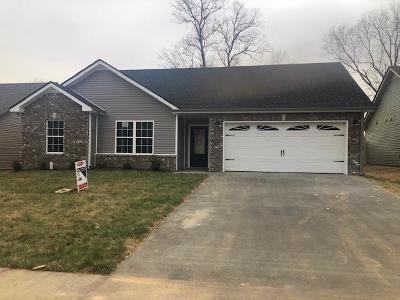 Clarksville Single Family Home For Sale: 40 Hollow Crest