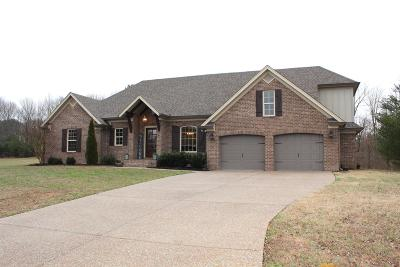 Robertson County Single Family Home For Sale: 3151 Woodsy Creek Dr