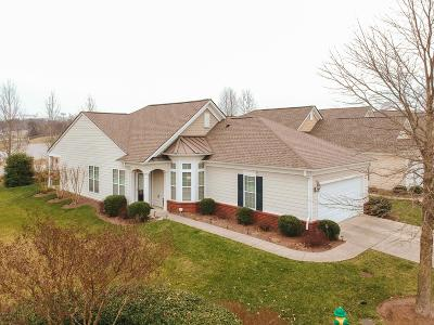 Mount Juliet Single Family Home For Sale: 198 Old Towne Dr
