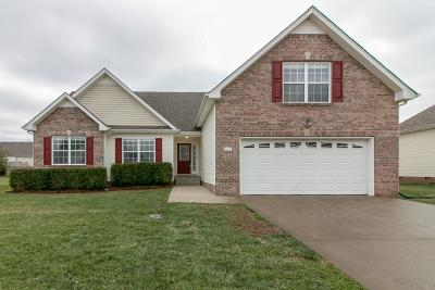 Single Family Home For Sale: 1168 Country Fields Ln