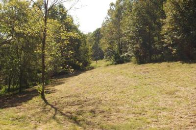Residential Lots & Land For Sale: 278 Defeated Creek Hwy