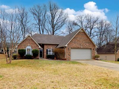 Spring Hill Single Family Home For Sale: 3709 Ivanora Dr