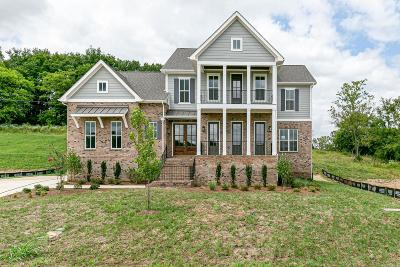 Williamson County Single Family Home For Sale: 7009 Vineyard Valley Dr (103)