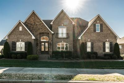 Hendersonville Single Family Home Under Contract - Showing: 1047 Gadwall Cir