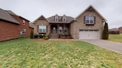 Spring Hill Single Family Home For Sale: 3080 Foust Dr