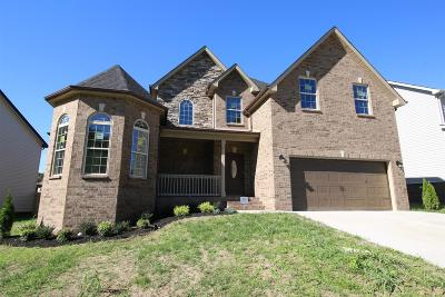 Clarksville Single Family Home For Sale: 743 Fields Of Northmeade
