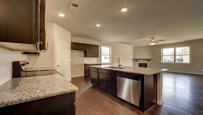 Smyrna Single Family Home For Sale: 531 Hawk Cove #39