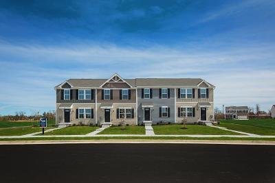 Davidson County Condo/Townhouse For Sale: 2137 Portway Alley 224c