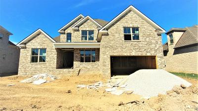 Spring Hill Single Family Home Under Contract - Not Showing: 3025 Elkhorn Place (19)