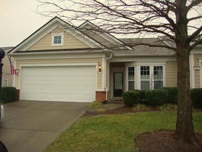 Mount Juliet Single Family Home For Sale: 164 Old Towne Dr