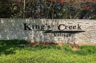 Maury County Condo/Townhouse For Sale: 4000 Deer Creek Blvd Unit E3