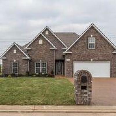 Lavergne, Murfreesboro, Smyrna Single Family Home For Sale: 7659 Knobdate Rd