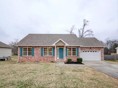Clarksville Single Family Home For Sale: 221 Raintree Dr