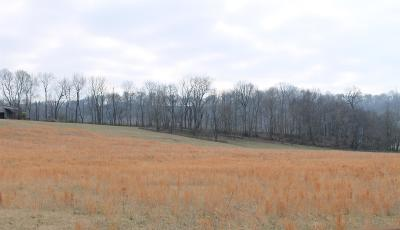 Columbia Residential Lots & Land For Sale: Theta Pk