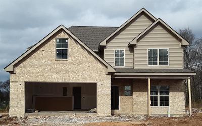 Smyrna Single Family Home For Sale: 1433 Wrangler