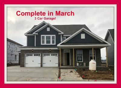 Sumner County Single Family Home For Sale: 568 Nottingham Avenue #512