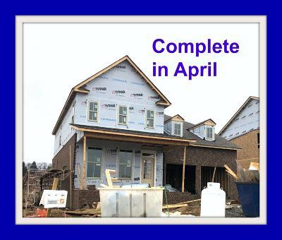 Sumner County Single Family Home For Sale: 537 Nottingham Avenue #561