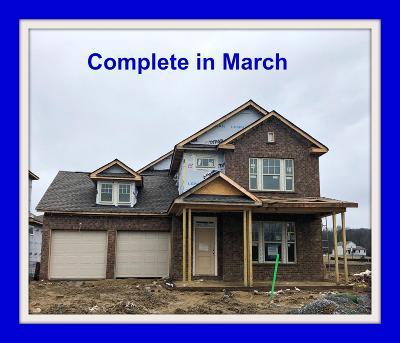 Hendersonville Single Family Home For Sale: 237 Abington #526