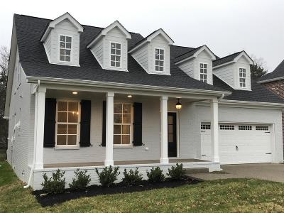 Mount Juliet Single Family Home For Sale: 717 Masters Way