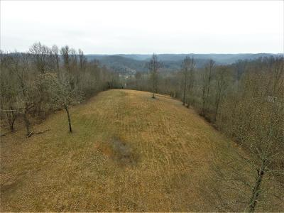 Sumner County Residential Lots & Land For Sale: 1238 B Hogans Branch Rd